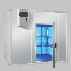 Monitoraggio wireless per HACCP, camera climatica