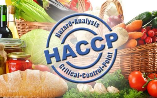 HACCP nuovi prodotti per il controllo delle temperature